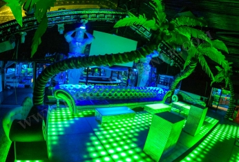 nightclub-design-palm-tree