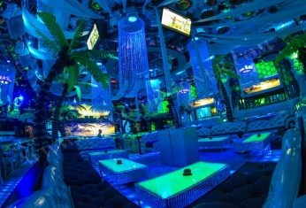 palm-decor-nightclub
