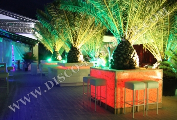led palm pot decor